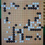 NHK杯戦囲碁 中野泰宏9段 対 本木克弥8段
