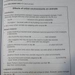 IELTS リスニング模試