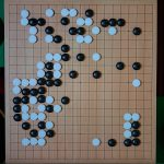 NHK杯戦囲碁 秋山次郎9段 対 坂井秀至8段