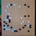 NHK杯戦囲碁 芝野虎丸8段 対 秋山次郎9段