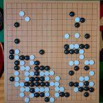 NHK杯戦囲碁 張栩9段 対 上野愛咲美女流二冠