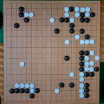 NHK杯戦囲碁 河野臨9段 対 鶴田和志6段