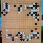 NHK杯戦囲碁 村川大介9段 対 原正和3段