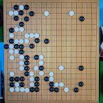 NHK杯戦囲碁 張栩9段 対 安斎伸彰7段