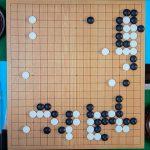 NHK杯戦囲碁 六浦雄太7段 対 河野臨9段
