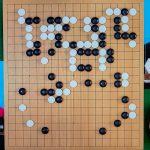 NHK杯戦囲碁 高尾紳路9段 対 瀬戸大樹8段